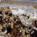 Sweet & Salty Granola Recipe